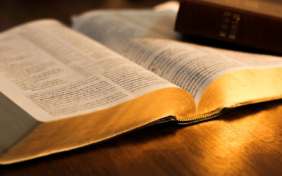 A Man Undeterred by Opposition (Nehemiah 4) – June 18th, 2017
